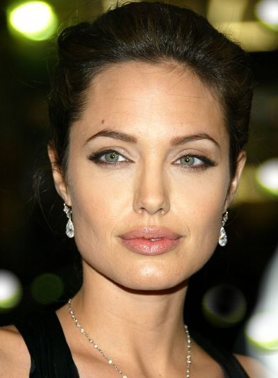 Angelina Jolie Sophisticated Updo