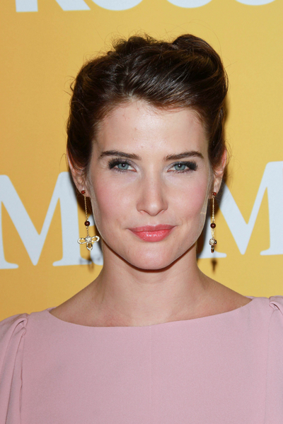Cobie Smulder's Party, Brunette, Chic, Updo Hairstyle