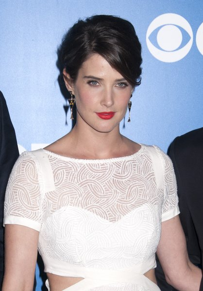 Cobie Smulders' Sexy, Chic, Brunette, Updo Hairstyle