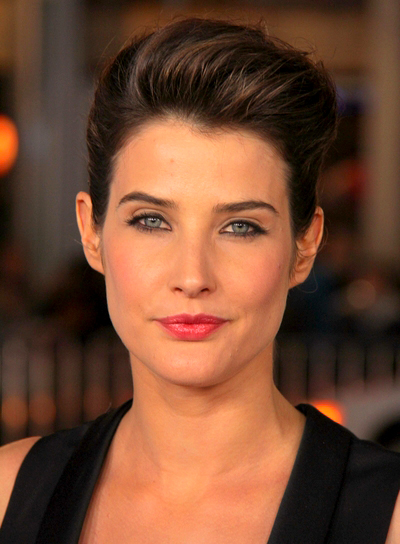 Cobie Smulders' Brunette, Edgy, Chic, Updo Hairstyle