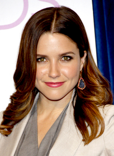 Sophia Bush's Long, Romantic, Wavy, Sophisticated Hairstyle